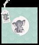 Mintgroen geboortekaartje met olifantje