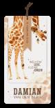 Leuk geboortekaartje met giraf