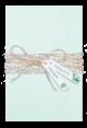 huwelijkskaart in het mintgroen met een omslag van parelmoer en aquarel takjes gecombineerd met kant in de kleur goud en labels