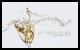Uitnodiging - Champagneglazen met bubbels