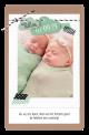 mint groen geboortekaartje voor tweeling
